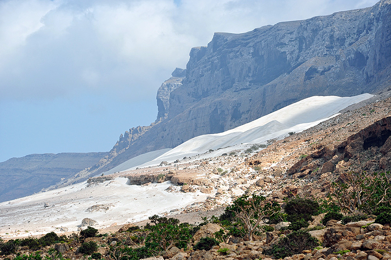 The white sand coast of Socotra